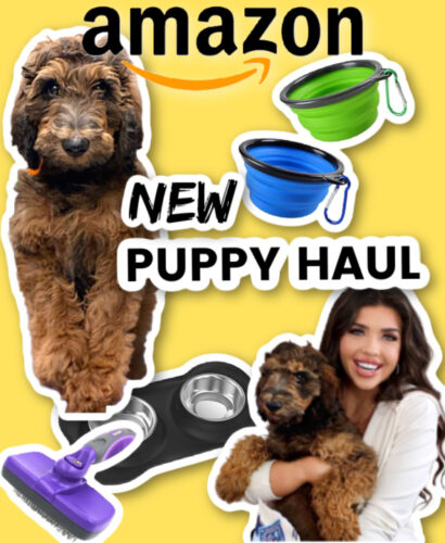 new-puppy-haul